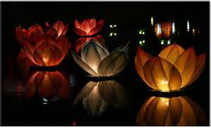 Pool decor ideas floating pool flower lanterns mazelmoments com