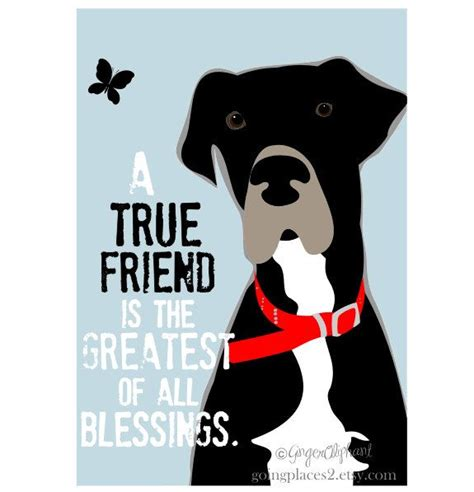 10 Signs Of A True Friend by 109 Best Images About Great Danes On Harlequin
