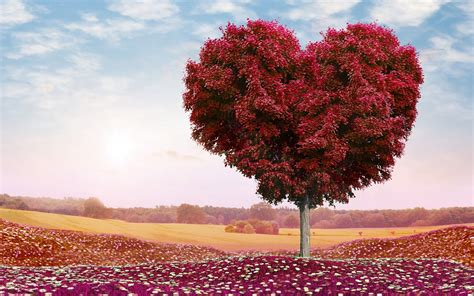 beautiful red heart tree wallpapers beautiful red heart