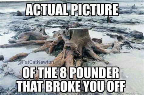 Funny Fishing Memes - 10 fishing memes to help pass the time pics