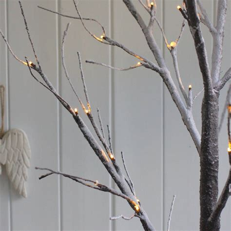 frosted twig light up tree by magpie living
