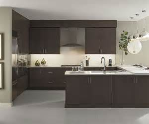 Wenge Kitchen Cabinets by Wenge Kitchen Cabinets Omega Cabinetry