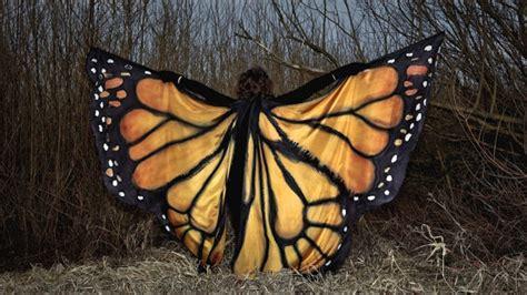 como hacer alas de mariposa para disfraz de nena unas alas de mariposa pintadas a mano para tu disfraz de