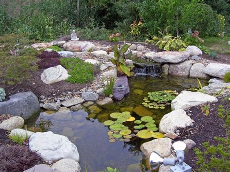 aquascape pond products aquascape ponds www pixshark com images galleries with