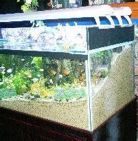 Lu T5 Aquarium federation of aquatic societies