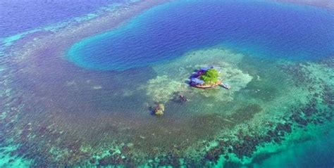 bird island belize airbnb un isola paradisiaca per sentirsi come un naufrago del xxi
