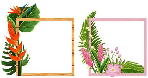 cornici con fiori due cornici con fiori e foglie scaricare vettori premium