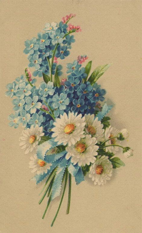 printable forget me not flowers 259 best images about forget me nots on pinterest