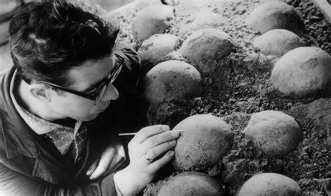 alimenti che contengono albumina dinosaur eggs around 130 million year found perfectly