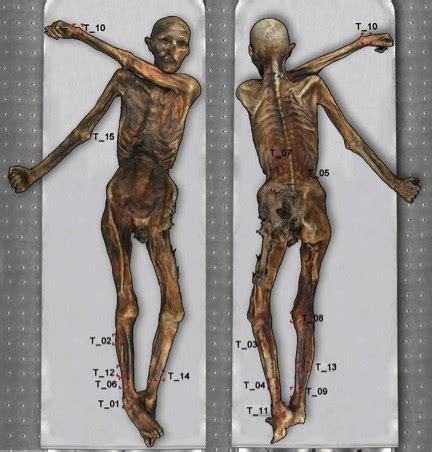 scientists have mapped all of 214 tzi the iceman s 61 tattoos
