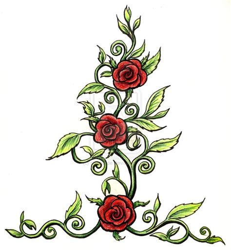 rose thorn bush tattoos 46 best inspiring ideas images on to draw