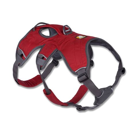 best dog harness best dog harness large dogs