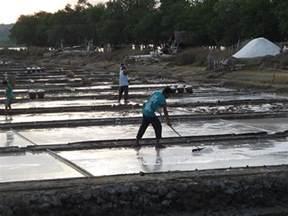 bustria salt farm best salts from pangasinan philippines how salt is made