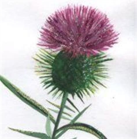 thistle rubber st pin by margo mills wayman fallis on thistle