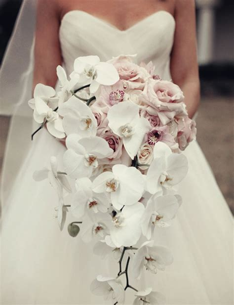Orchid Wedding Bouquet by What Flowers Would You Like For Wedding Bouquet Tulle