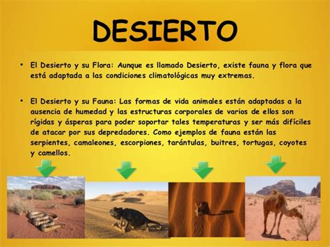 los desiertos son pictures to pin on pinterest tattooskid