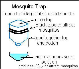 mosquito trap diy yeast diy mosquito trap without yeast diy do it your self