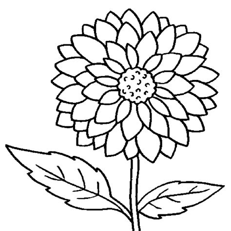 coloring pages of real roses flower coloring pages free printable coloring pages
