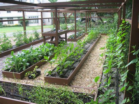 wood for raised bed vegetable garden wood raised bed backyard vegetable garden along wire fence