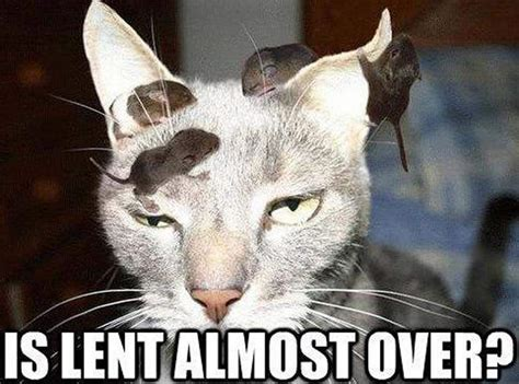 Lent Meme - lent 2015 all the memes you need to see heavy com page 7