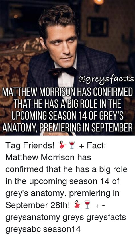 Greys Anatomy Confirms Hes by 25 Best Memes About Season 14 Season 14 Memes