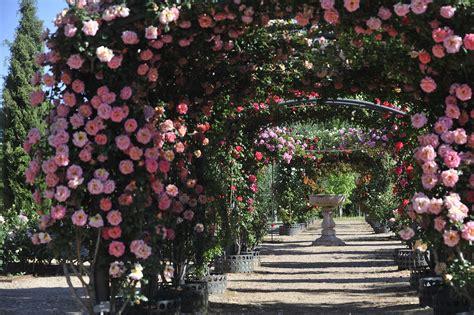 real jardin botanico real jard 237 n bot 225 nico juan carlos i universidad de alcal 225