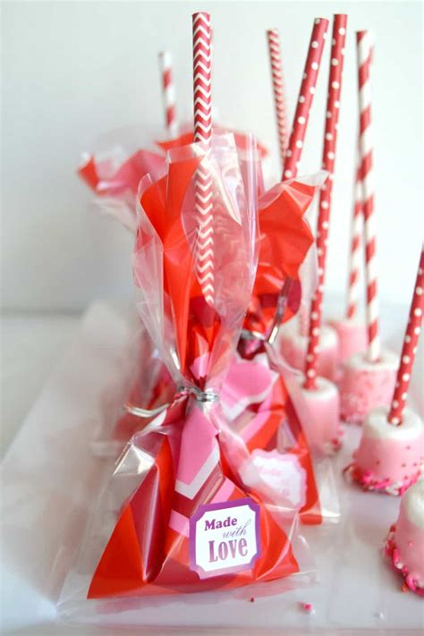 Handmade Valentines - adorable marshmallow treats gift bag idea
