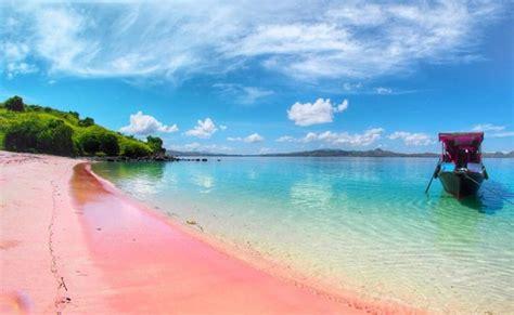 pantai pink pantai lombok  unik  berjuta pesona