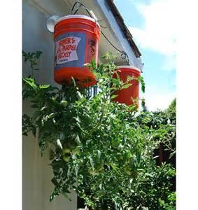 diy tomato planter