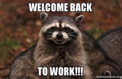 Excellent Raccoon Meme - welcome back to work evil plotting raccoon make a meme