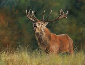 Realtree Duvet Cover Red Deer Stag Painting By David Stribbling