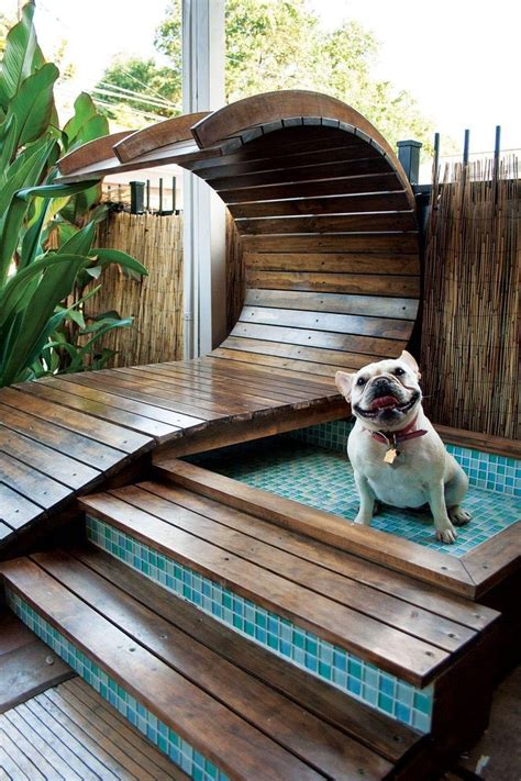 puppy pool of home pool slides backyard design ideas