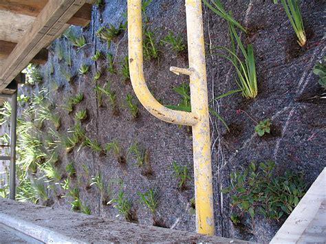 blanc vertical garden drew school san francisco