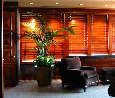 piante in vaso da interno piante da vaso sempreverdi piante da terrazzo piante