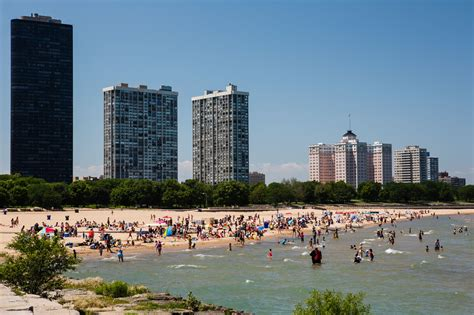 Best House Plant by The Best Chicago Beaches For Sunny Summer Fun