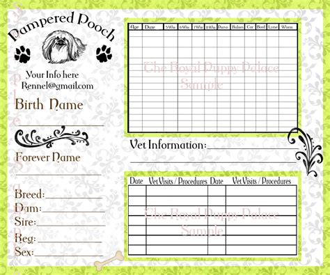 vaccine card template pered pooch green customizable vaccination cards for