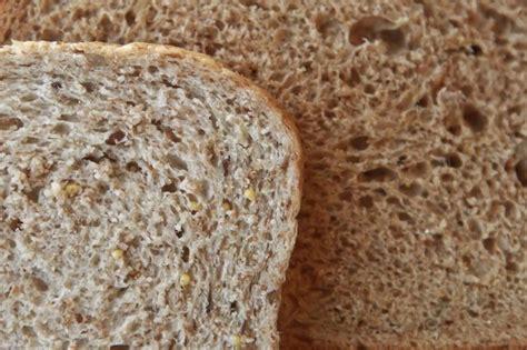 whole grains vs white bread wheat bread vs whole grain