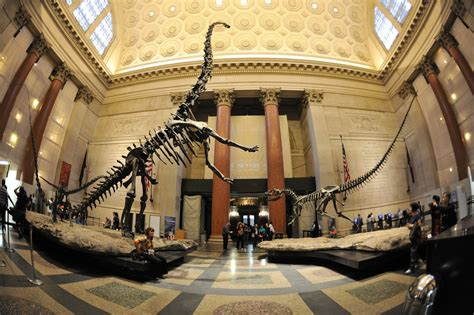 best museum in ny why nyc is the best city in the world to raise