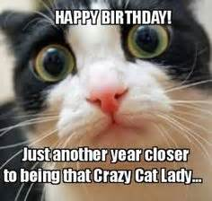 Happy Birthday Meme Cat - 1000 images about happy birthday on pinterest birthday