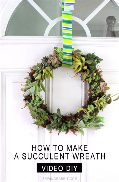 amazing diy succulent crafts   beautify  home