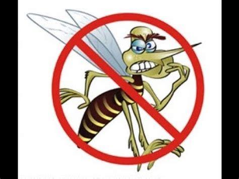 anti mosquito sound 16 khz el mejor repelente de mosquitos sonido 15 khz y v 237 deo