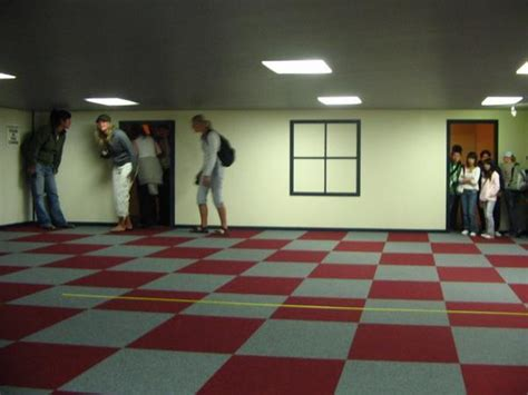 the ames room the ames room photo