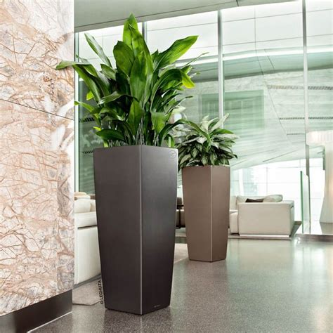 modern plants indoor the art of decorating with tall planters interni