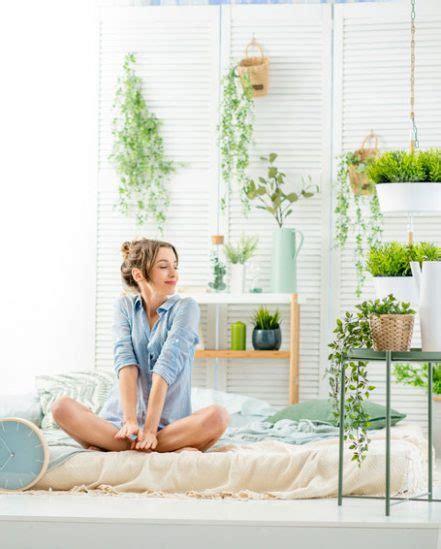 Pflanzen Für Gute Raumluft by Pflanzen Fr Gute Raumluft Pflanzen In Einem Halter Aus
