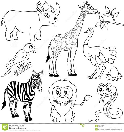 coloring pictures of animals in africa coloring animals 1 stock photo image 16167370