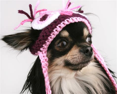 hats for dogs hat crochet pink owl beanie hat for dogs pet it apparel