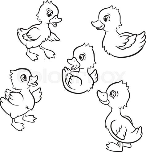 duck swimming coloring page coloring pages five little cute ducklings swim on the