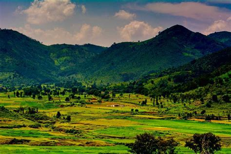 araku valley tourism  india top places travel