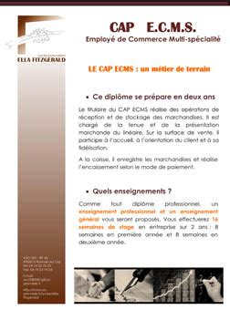 Lettre De Motivation Vendeuse King Jouet Lettre De Motivation King Jouet Employment Application