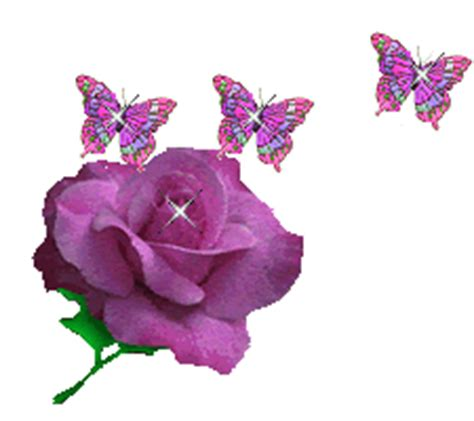 imagenes de flores brillantes im 225 genes brillantes de flores para coleccionar mil recursos
